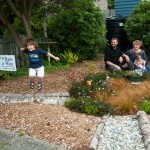 January 2013 Virtual rain garden tour