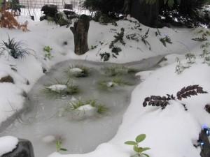 In winter, it's a snow garden!