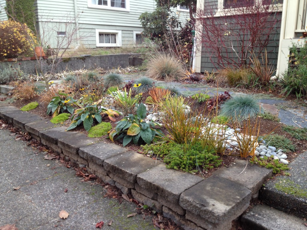 Brooke's sweet rain garden is a perfect fit for their lovely front yard!