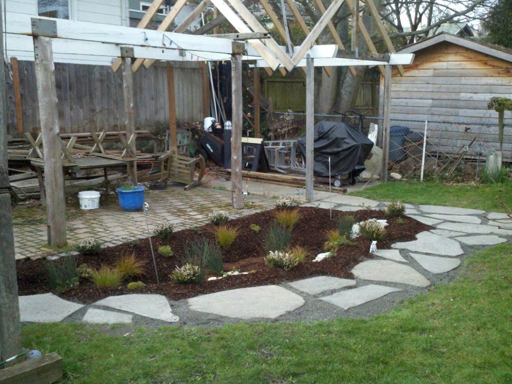 Steve's rain garden just after installation.