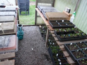 Greenhouse Filling Up!
