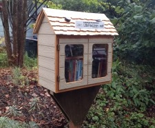Jenny's library