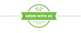 heyswansons_growwithus_intro_small
